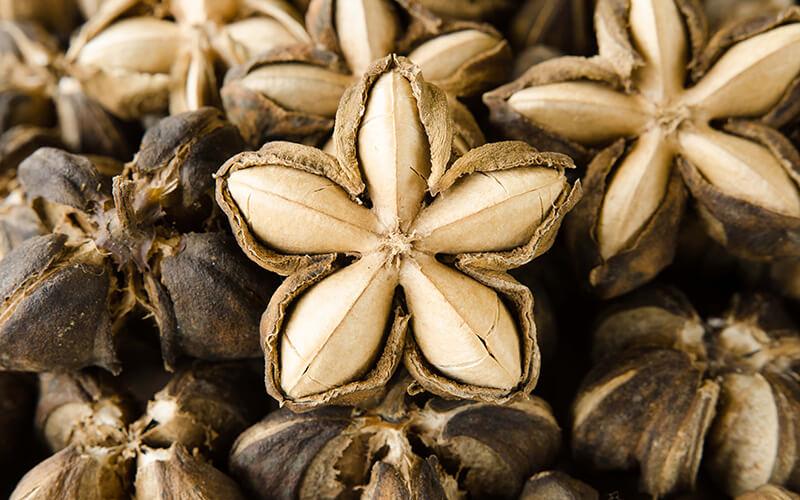 Sacha inchi seed oil